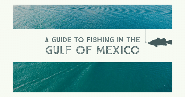 Title card for a guide to fishing the Gulf of Mexico