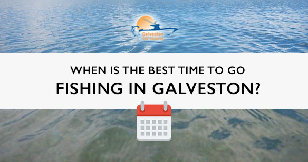 """Title card for blog post, """"When is the best time to go fishing in Galveston?"""""""